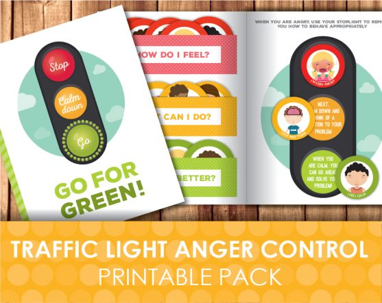 Traffic Light Anger Control